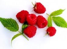 use raspberry ketones