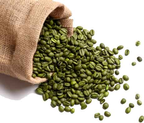 Is Green Coffee Bean Good for Weight Loss?