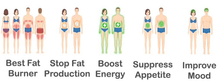 "Ph.375 Review * Clinically Researched ""X-5"" Formula * Scientifically Proven Weight Loss Ingredients"